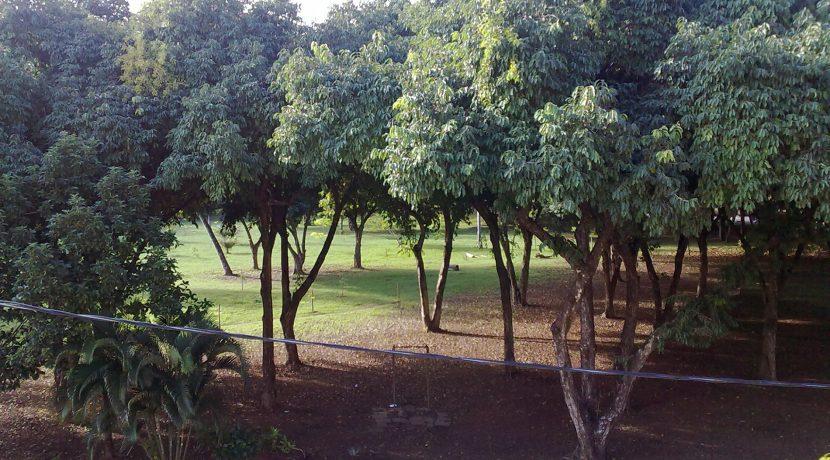 Casa a venda no Caminho das Árvores